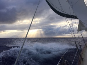 Sailing from New Zealand to Hawaii
